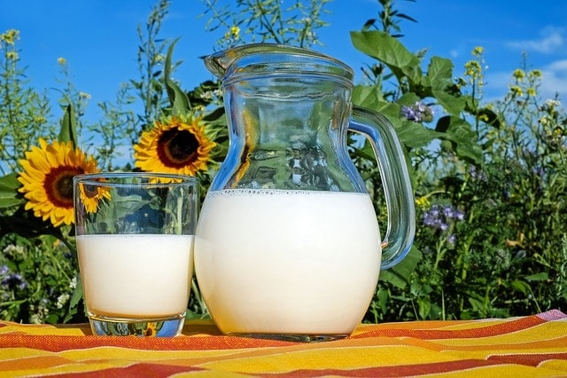 Melk - Niveau testen Spaans leren Tilburg A1